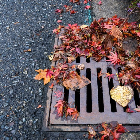 Drain Clearance Services